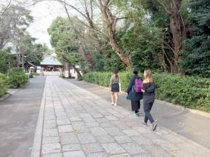 豪徳寺20161012_2819