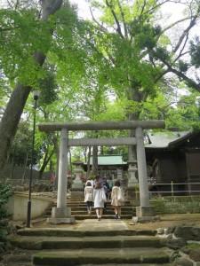 三宿神社で参拝