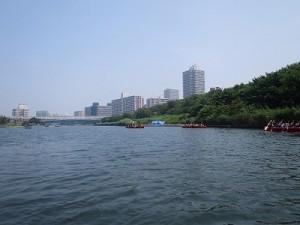 水辺の緑とマンションやビル群。東京の川らしい風景を満喫。