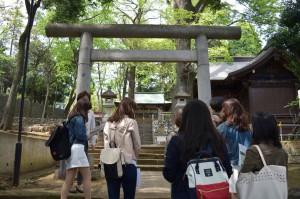 新緑に囲まれた三宿神社