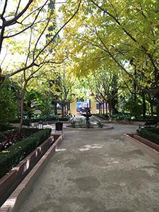アルカリングアまでに通る小さい公園