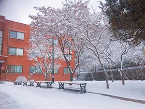 初めての大雪で積もった日の語学堂前