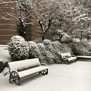 雪が積もった日の朝、語学堂に行く道で