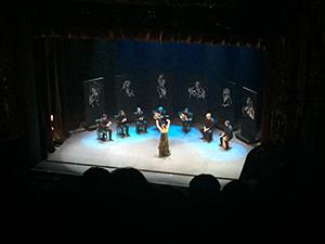 家族に連れられフラメンコのショー(sara baras)を観覧