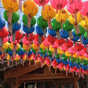 奉恩寺にて。色とりどりの提灯