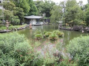 7号館の教室の窓からはキャンパスのオアシス・昭和の泉が見下ろせます