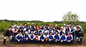 6shugo_plantations